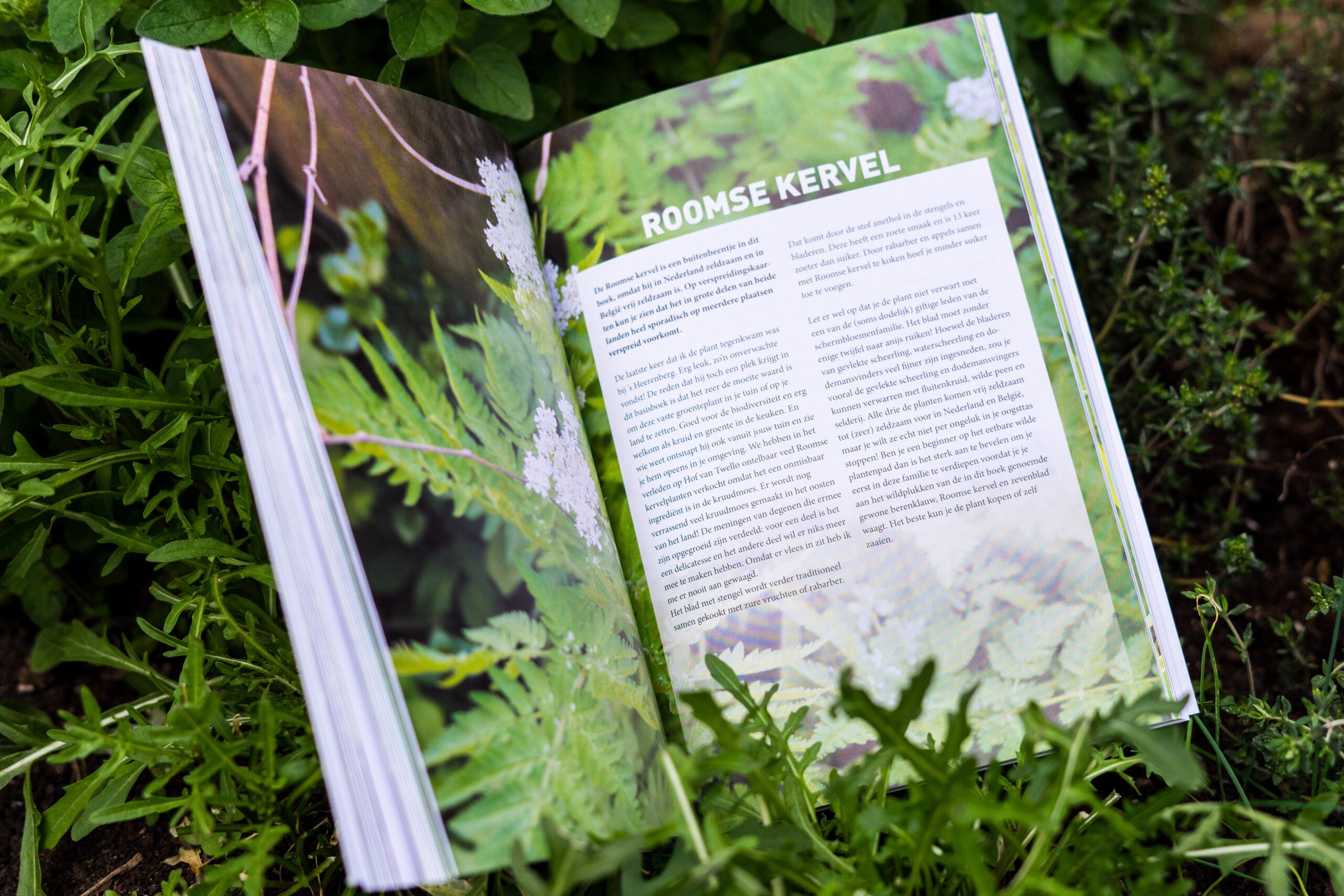 Basisboek wilde bladgroenten review binnenkant